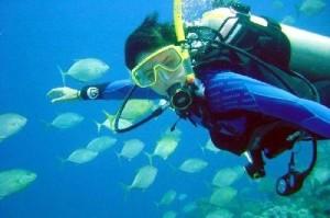 Potápění si na Kubě skutečně užijete