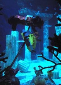 Legoland Aquarium 3