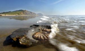 Charmouth-Beach-Dorset