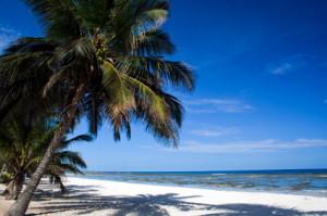 Beach-near-Mombasa