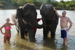 koupání se slony