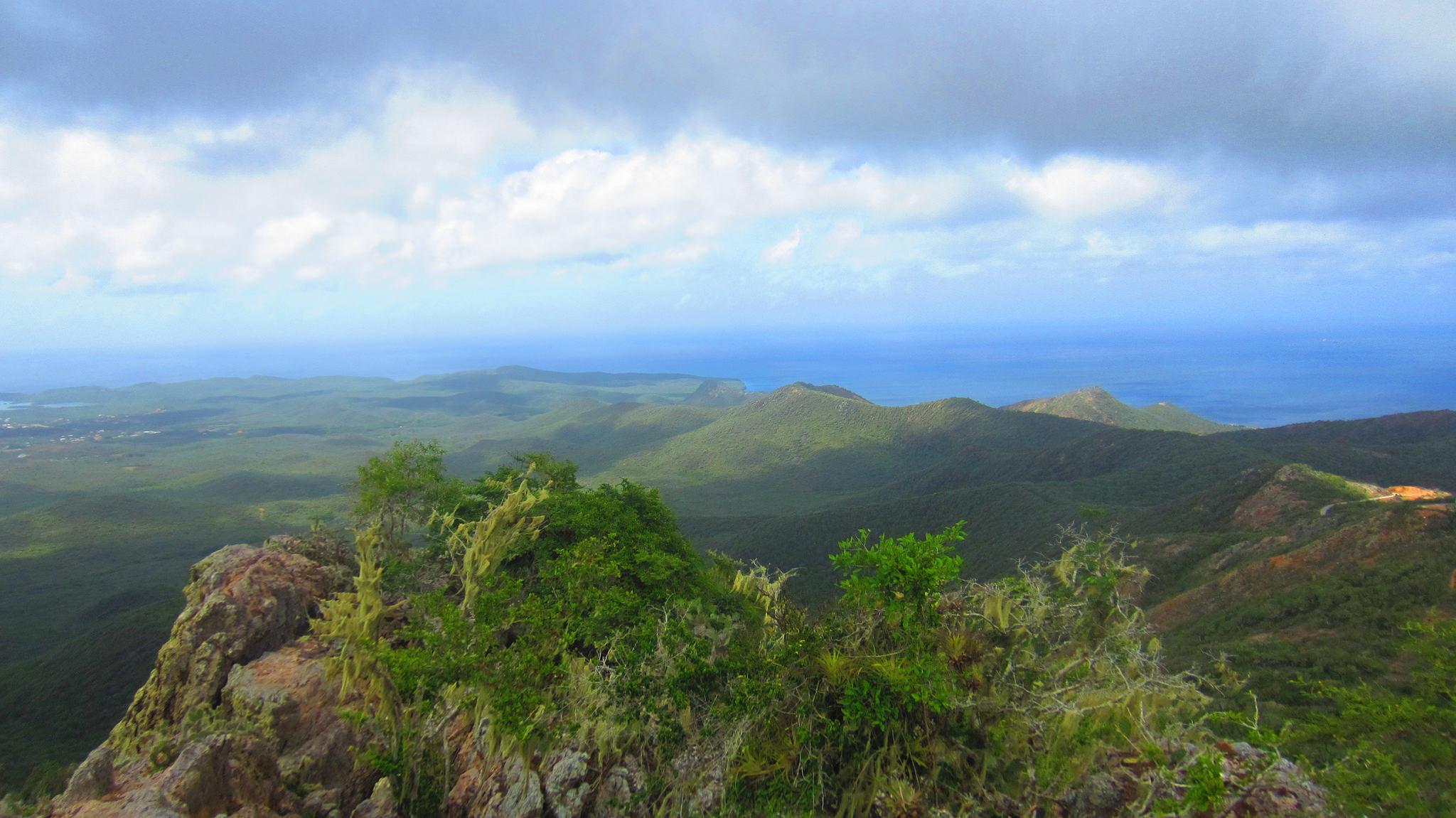Nejvyšší hora, Nelo Hotsuma