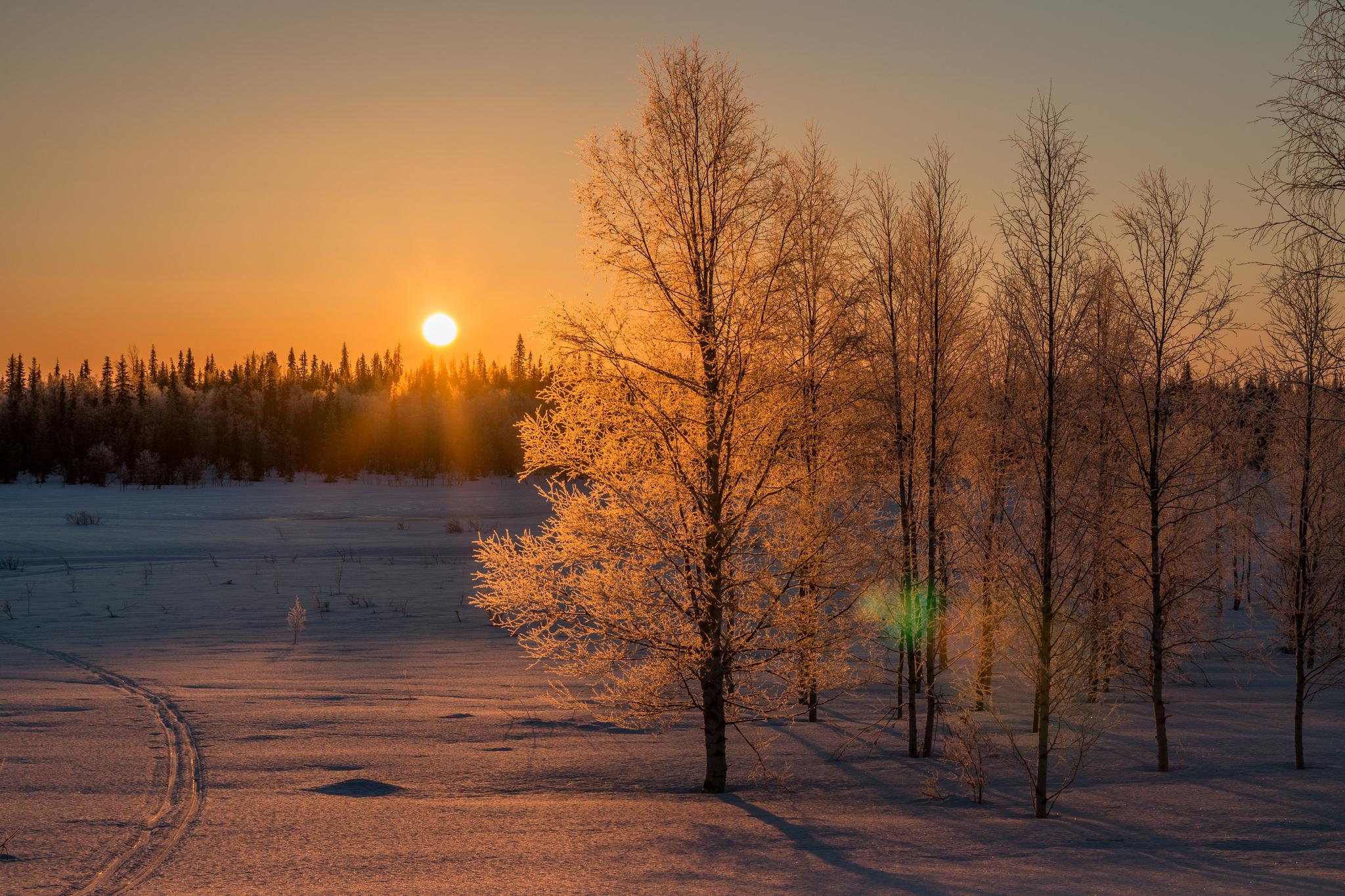Sněhová pokrývka se drží většinu roku, Markus Trienke