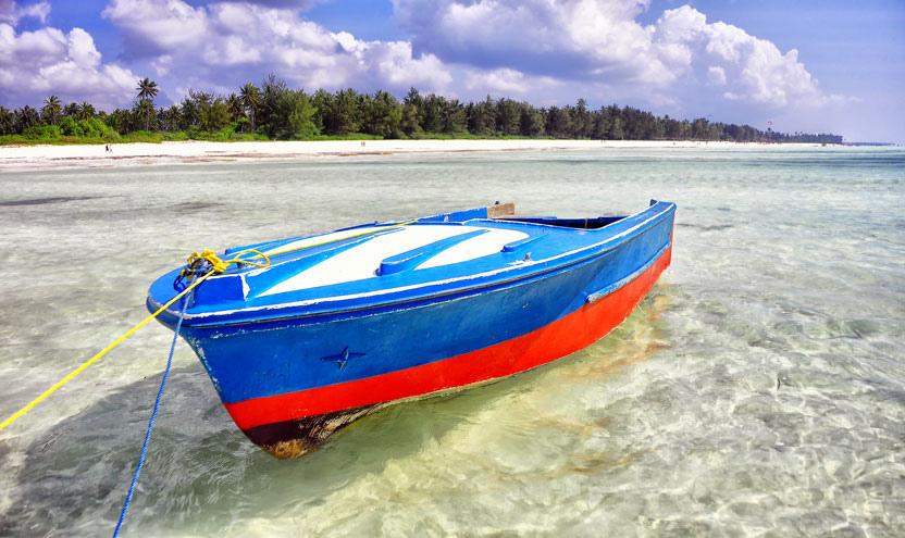 Voda je na Zanzibaru průhledná, Rod Waddington