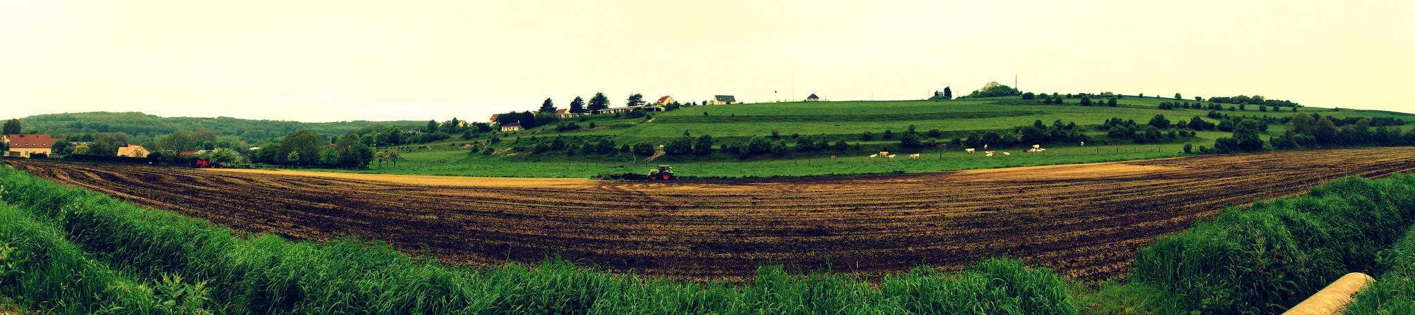 Krajina přeměněná k zemědělským účelům, Olivier Duquesne